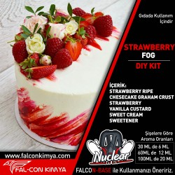 STRAWBERRY FOG 30 - 60 - 100 ML DIY-KIT