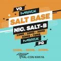 SALT BASE - CHEM SALT-B MERCK/MERCK